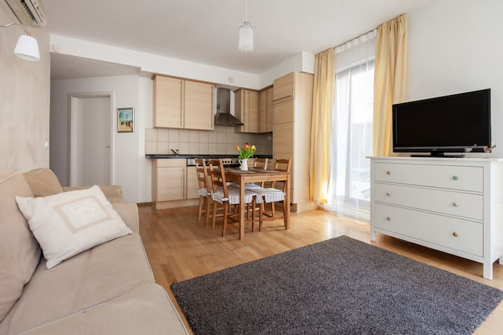 Center, spacious apt -2br, WIFI, AC - Budapest - Leilighet