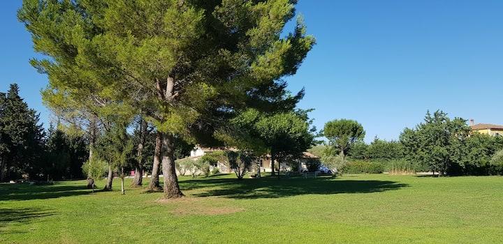Une halte en Provence