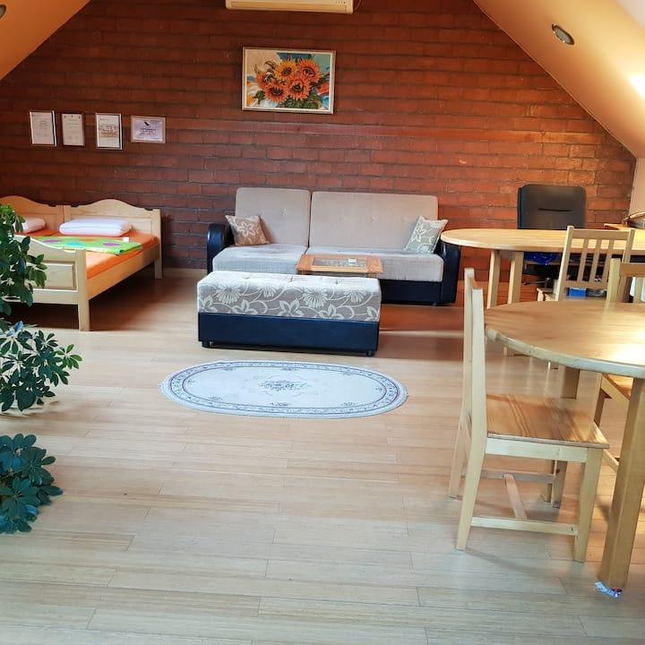 Elena Apartament
