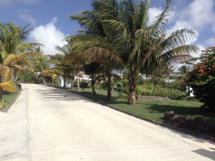 Driveway to enter our compound - private and exclusive
