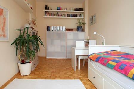 Zimmer in einer Altbauwohnung - Fürth