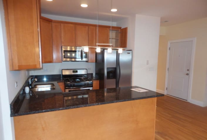 Spacious Bedroom in Woodlawn near lake - Chicago - Apartamento