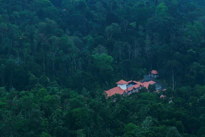 Ayurvedic retreat at Svaztha - Kumily - Villa