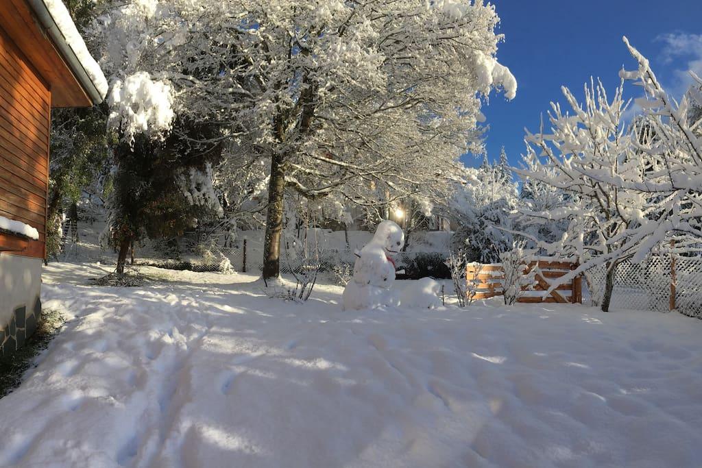 Front yard with snow, Patio de la casa despues de una nevada importante.