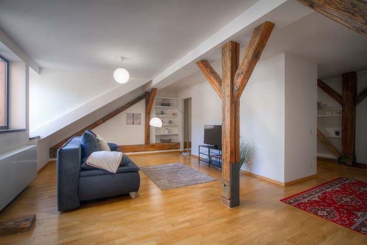 Modern renovated apartment in Karlín