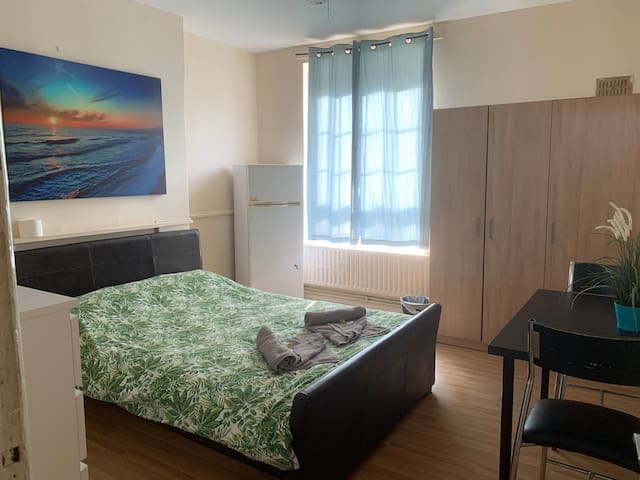 Spacious Master Room, Close to Canary Whalf
