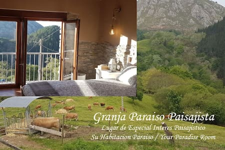 Picos de Europa, Room in farm house in mountains