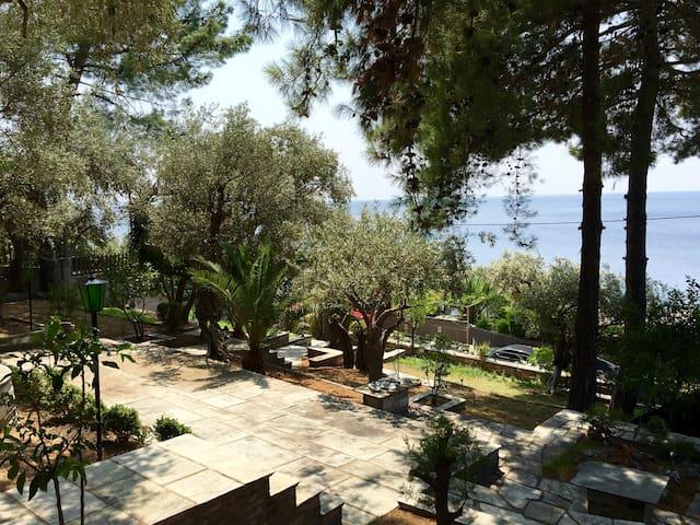 Comfy Ηouse - Close to sea - (Afissos Pelion) - Afissos