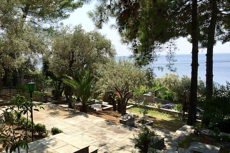 Comfy Ηouse - Close to sea - (Afissos Pelion) - Afissos - Apartment