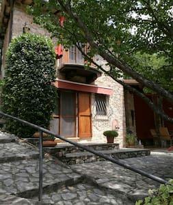 Lovely cottage in Umbria - Civitella - House