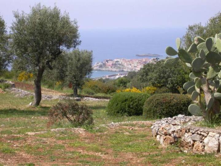 MOONRISING-Natura-Quiete-Fiori-Profumi-Tramonti-