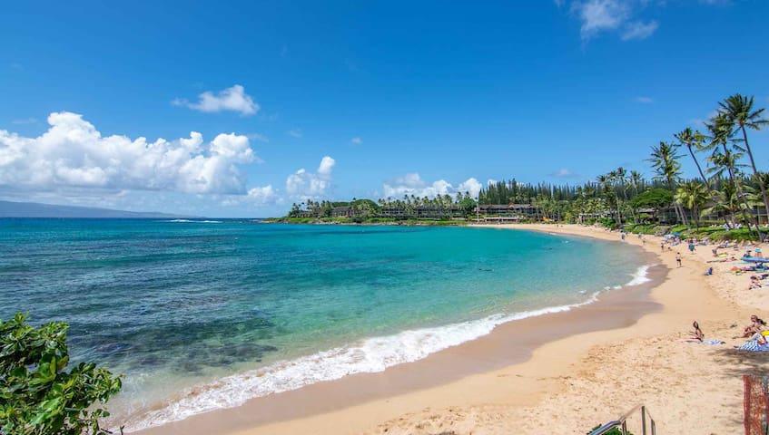 Beachfront Resort in Napili Bay - Napili Surf