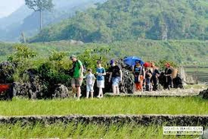 Deluxe Sapa tour bybus (hotel stay)