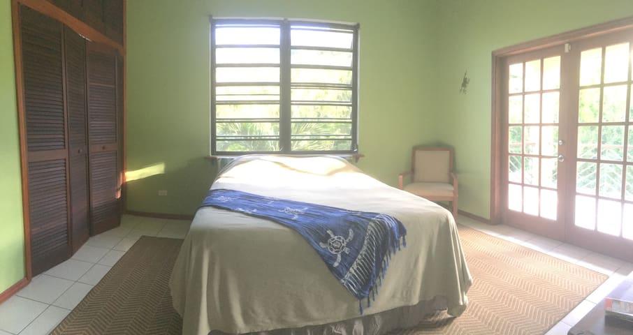 Cool Tropical Oasis - Sea Turtle Room