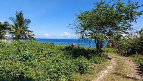 josephines beach resort