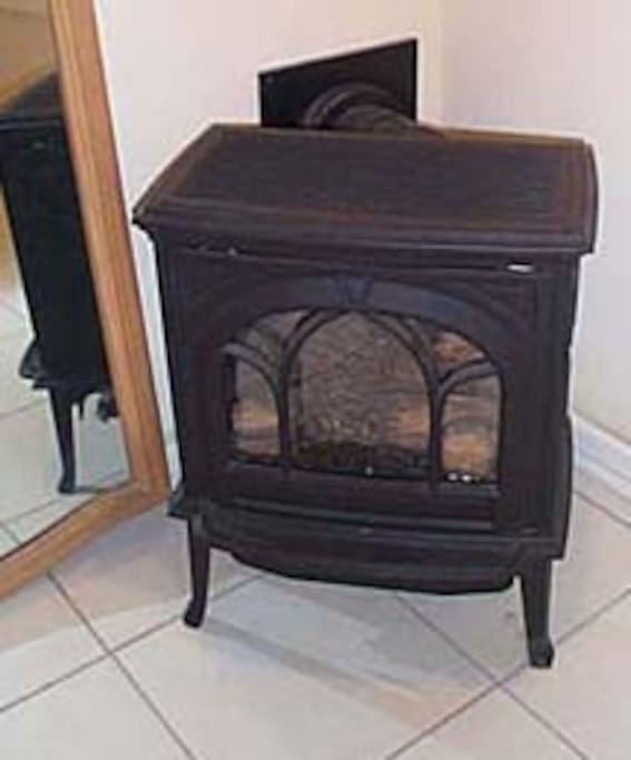 Wood like Swedish stove provides warmth and ambiance