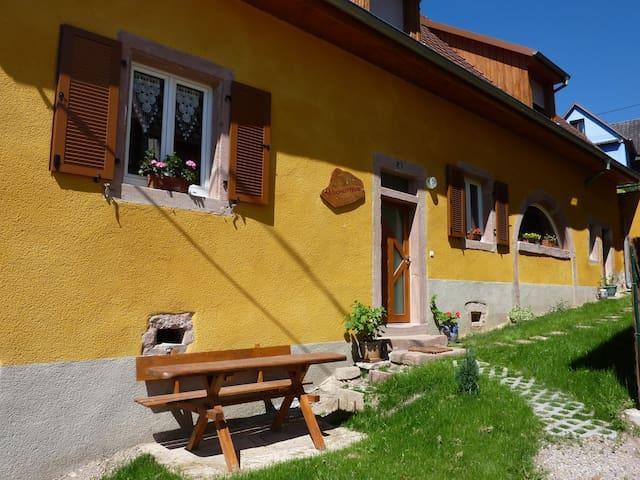 Gite SCHLITTEUR - Breitenbach - Appartement
