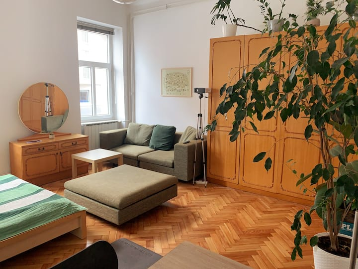 Newly renovated studio near the park and city