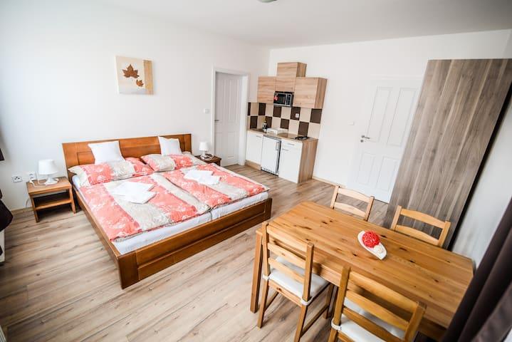 English - Apartment Delanta