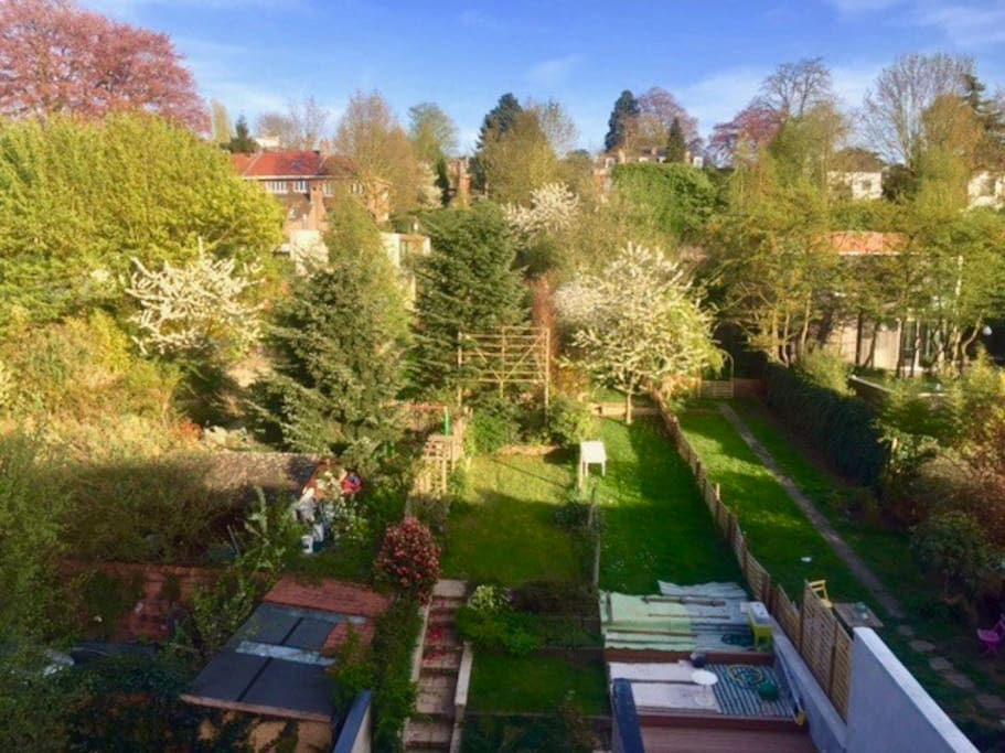 Jardin et alentours, vue depuis chambre