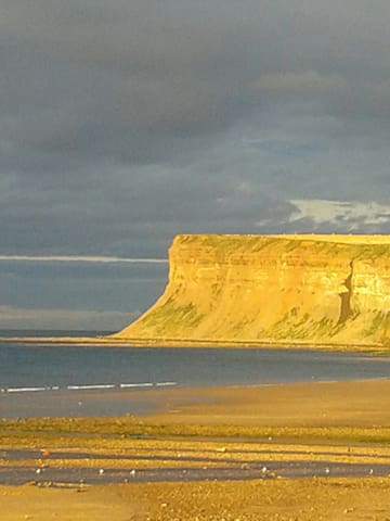 Garden flat - Saltburn-by-the-Sea - 公寓