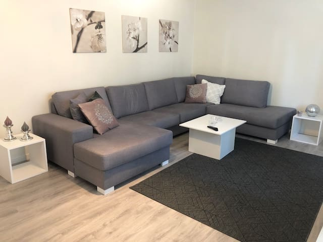 Recently renovated apartment near the city center