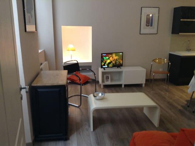 Appartement de charme en plein coeur de Rodez