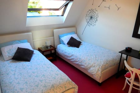 Lovely Cosy Twin with B'fast in heart of the City - Winchester - House