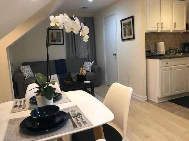 Entire 1 Bedroom Apt -Near EWR/ NYC.All amenities