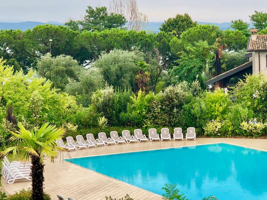Swimming pool inside residence