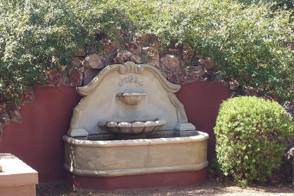 Garden fountain in private backyard