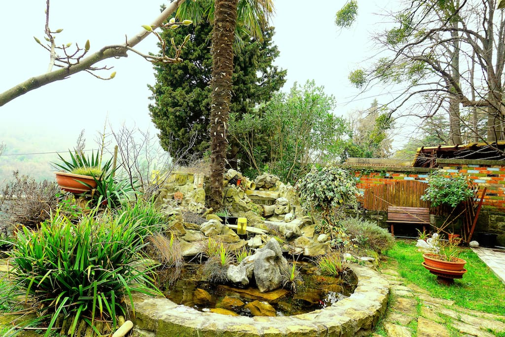 Fish pond in front of your terrace