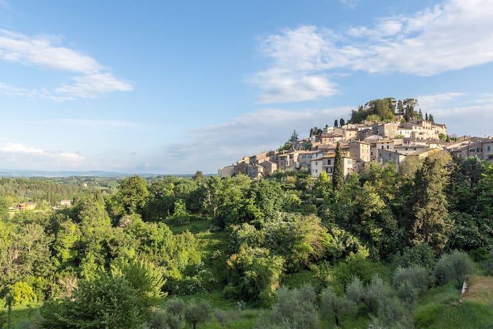 Case Aneris, Tosca - La più bella vista su Cetona!