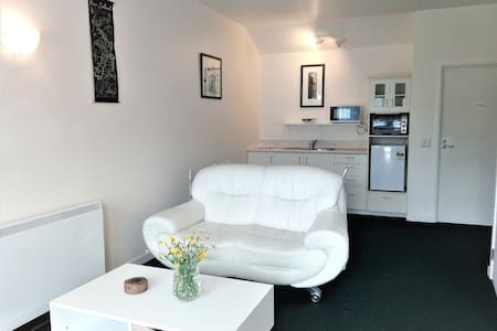 Cosy, tidy apartment in the heart of Moturoa - New Plymouth - Wohnung