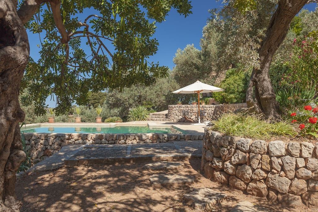 In the middle of nature only  2km from village Soller and 2km from port of Soller