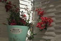 garden Details 2019