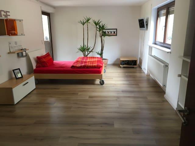 Willkommen in Kronach - Kronach - Samostatný apartmán