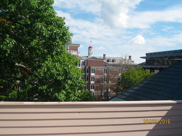 Private Suite w/ Full Bath & Deck mins to Harvard. - Cambridge - Apto. en complejo residencial