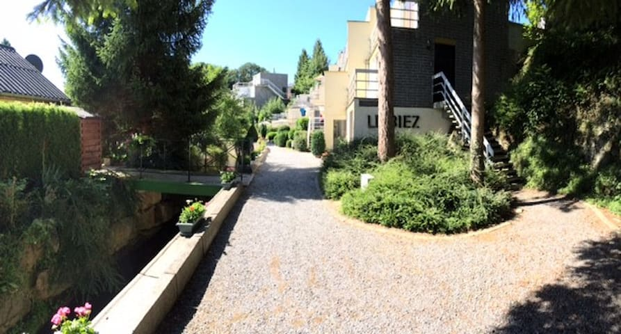 Studio de vacances à Han-sur-Lesse - Rochefort - Apartment