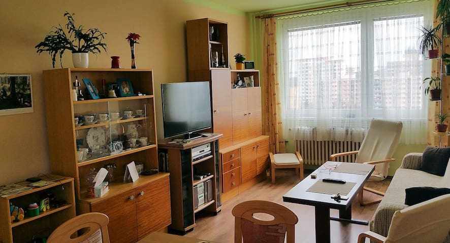 Traditional apartment in the quiet part of Prague. - 布拉格 - 公寓
