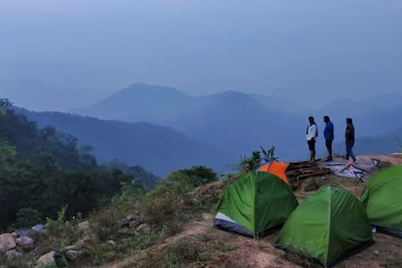 Wilderness on Holi
