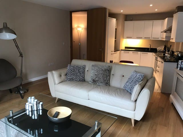 city centre luxury apartment - Cork - Huoneisto