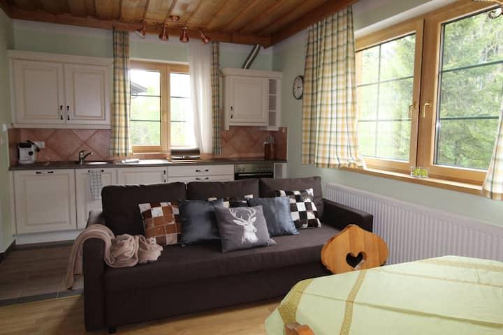 Wellness apartment LÄRCHEGG with infrared sauna