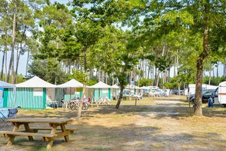 A louer bungalow toilé dans camping 3 étoiles. - Mimizan - Bungalow