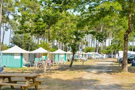 A louer bungalow toilé dans camping 3 étoiles.