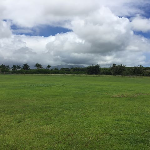Kauai North Shore country living 1BR private unit - Kilauea - Bungalow