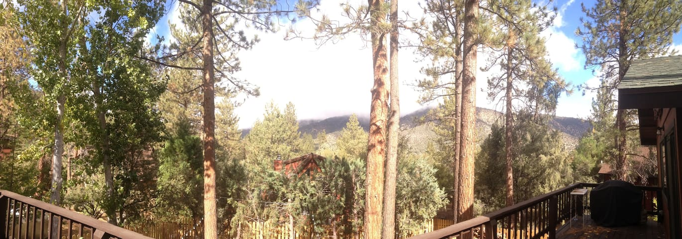 Mountains in the Forest - The Ultimate Retreat - Pine Mountain Club - Huis