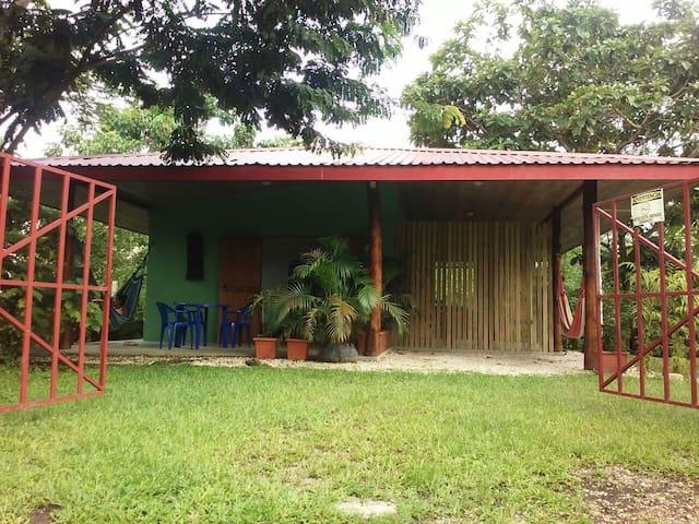 ANAM appartament for rent