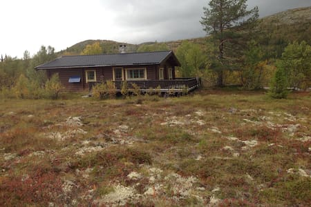 Miljøvennlig hytte til leie