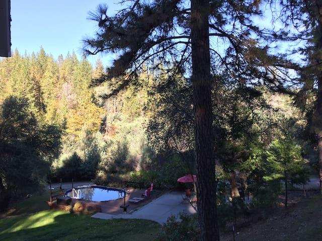 Peaceful Pines Getaway in Nevada City